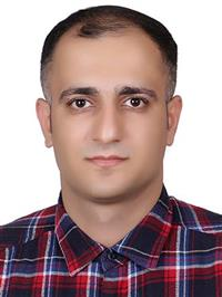Mostafa Amin Naji